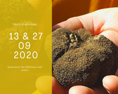 Truffle Hunting: September dates
