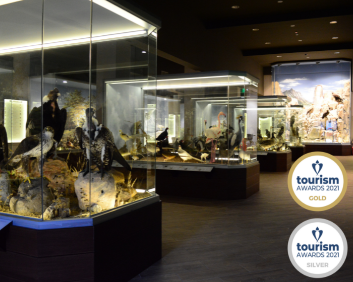Museum wins a Gold and a Silver award at Tourism Awards 2021