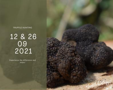 Truffle hunting - September dates