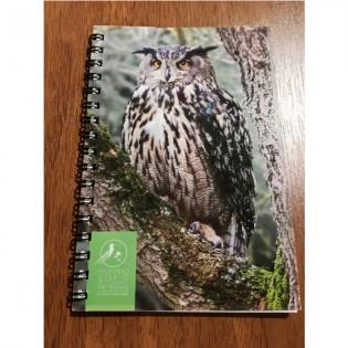 Notebook owl