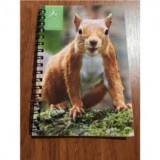 Notebook squirel