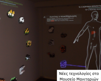 New technology used in Mushroom's Museum new part