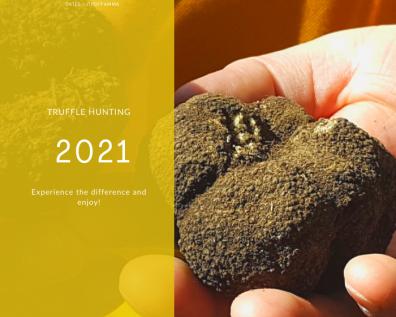 Truffle hunting: 2021 dates