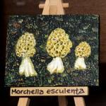 Κώστας Βασιλακόπουλος - Morchella Esculenta, ζωγραφική