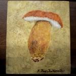 Κώστας Βασιλακόπουλος - Boletus, λαική ζωγραφική