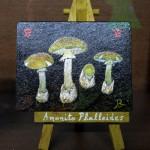 Amanita Phalloides - λαική ζωγράφική Κώστας Βασιλακόπουλος - Morchella Elata