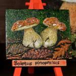 Κώστας Βασιλακόπουλος - Boletus Pinophilus, λαική ζωγραφική