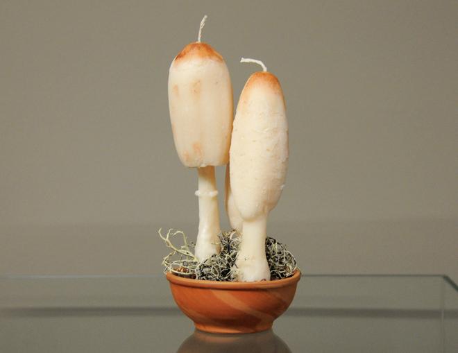 Κερί coprinus  – αρωματικό κερί μανιτάρι