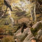 Μικρό δάσος - διοράματα Μουσείο Φυσικής Ιστορίας Μετεώρων